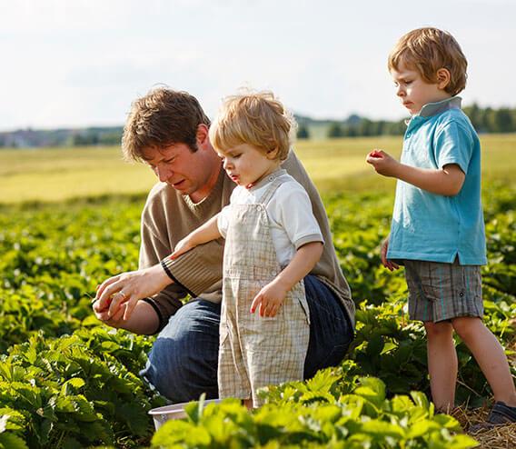 Wij zijn kwekerij Klepper,  een familiebedrijf